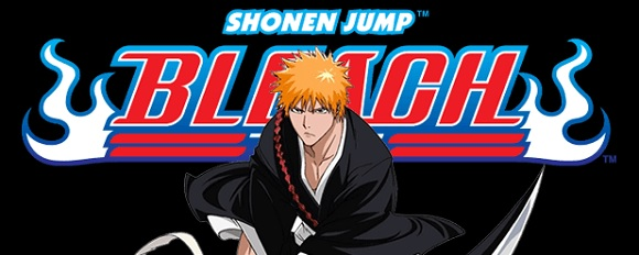 Bleach DVD-Boxen 4-6