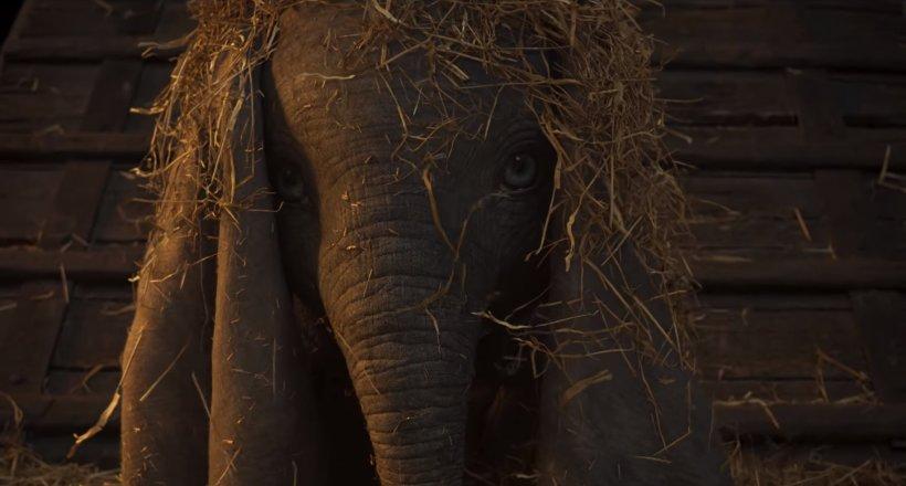 Dumbo Kinostart 2019