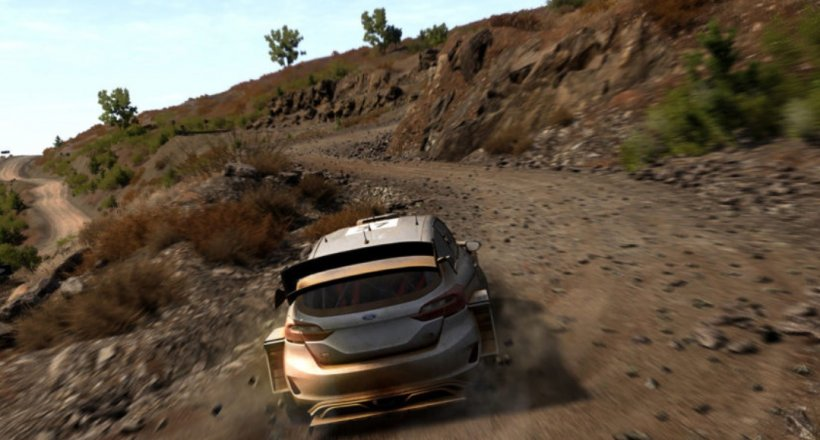 WRC 8 Feedback Video
